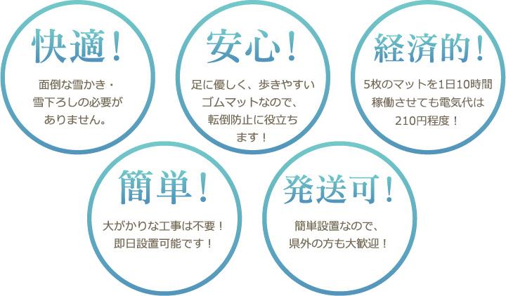 """電気式融雪マット""""雪国の春""""5つのポイント"""